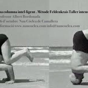 Una columna intel·ligent. Taller intensiu Mètode Feldenkrais. 5 i 6 octubre. Professor Albert Bordonada