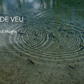 Del so al cos. Taller de veu. Professor Jordi Homs. Dimecres de 18 a 19,30. Abril-juliol Cantar, improvisar, sentir